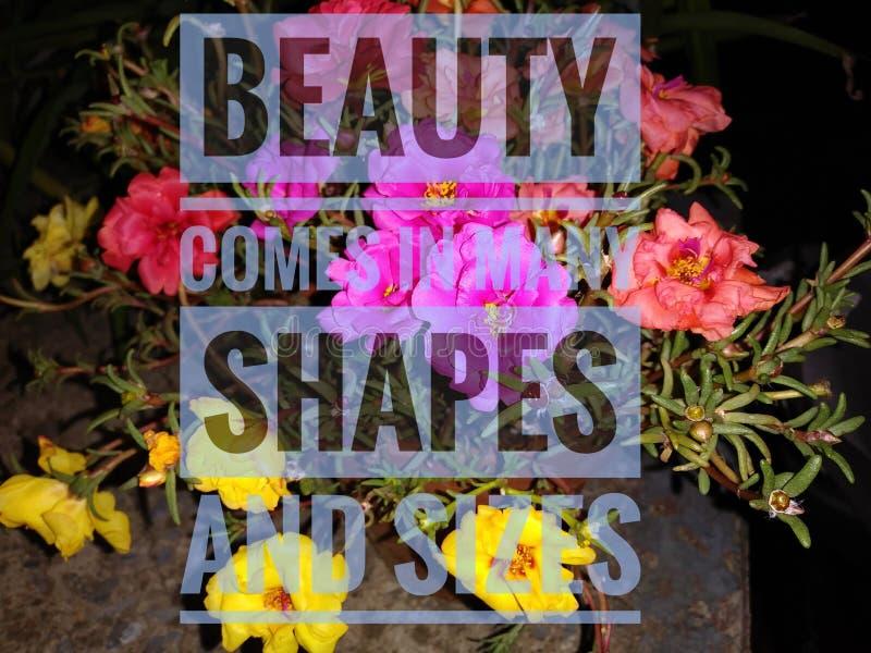 La beauté n'a pas spécifique image libre de droits