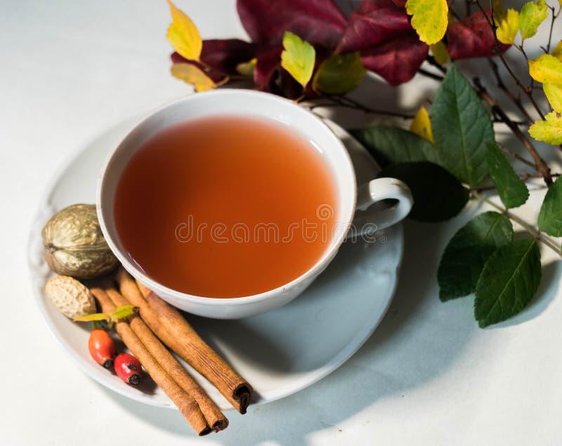 La bebida del otoño con las frutas reserva y calma humor foto de archivo