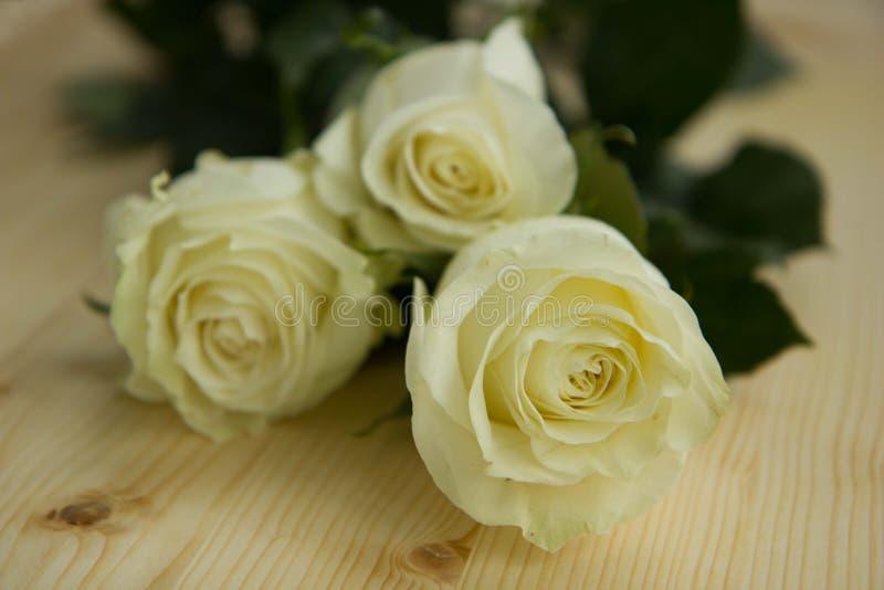 La bella composizione nel fiore fotografie stock