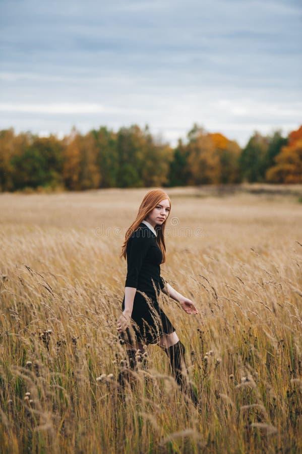 La bella donna dai capelli rossi in un vestito nero cammina su un campo di autunno immagini stock