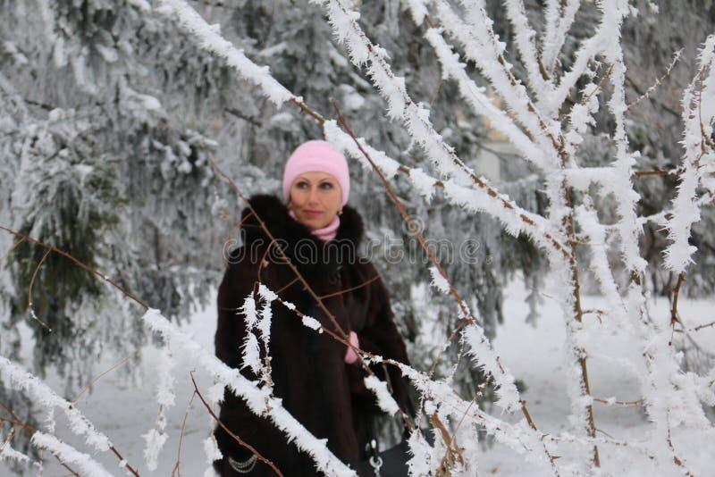La bella donna sta stando dietro l'albero della neve fotografie stock libere da diritti