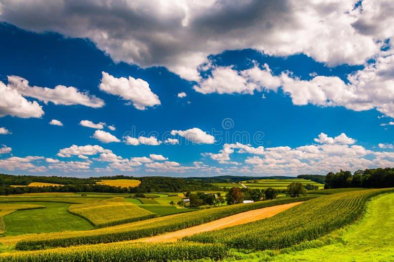 La bella estate si rannuvola i campi dell'azienda agricola e di Rolling Hills nel ru fotografie stock libere da diritti