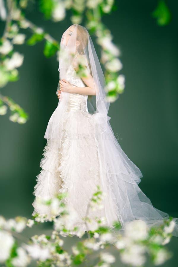 La bella giovane sposa ha velo sopra la sua testa e fotografia stock
