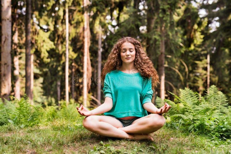La bella ragazza pratica la foresta di yoga di mattina immagine stock