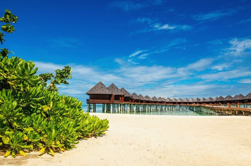 La bella spiaggia esotica ed il bungalow di legno stupefacente su turchese innaffiano immagine stock