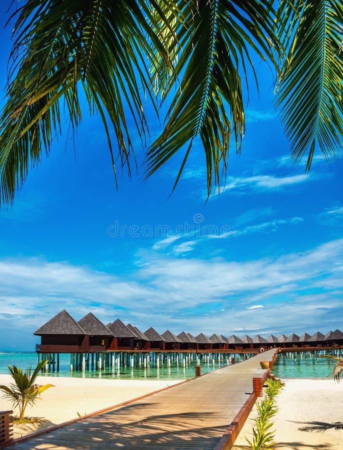 La bella spiaggia esotica ed il ponte di legno a stupire i bungalow esotici su turchese innaffiano fotografia stock libera da diritti