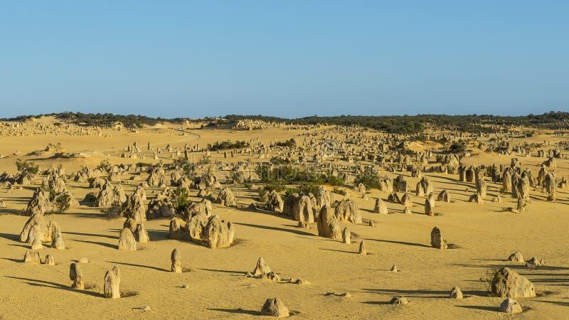 La bella vista dei culmini abbandona prima del tramonto, Australia occidentale fotografia stock libera da diritti