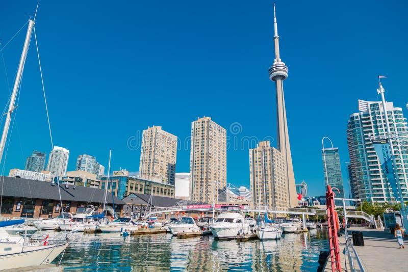 La bella vista del paesaggio di lungomare del centro di Toronto con gli yacht ha parcheggiato sull'acqua immagini stock libere da diritti