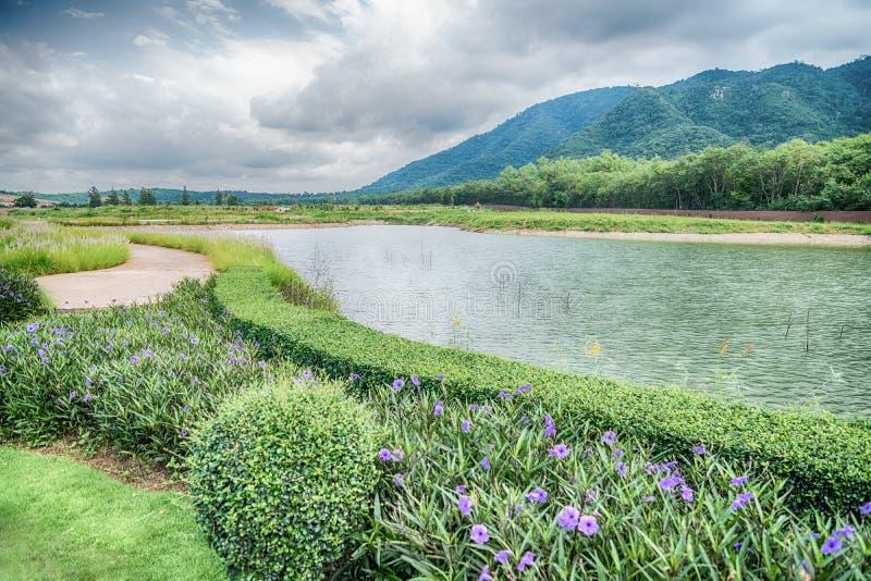 La bella vista di piccolo lago ha orlato dagli alberi verdi al Cl di autunno immagini stock