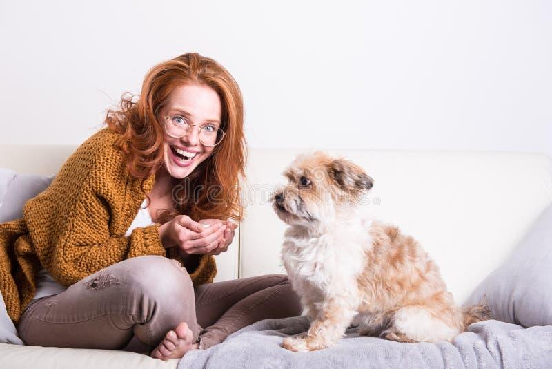 La belle femme rousse instruit son chien sur le divan image stock