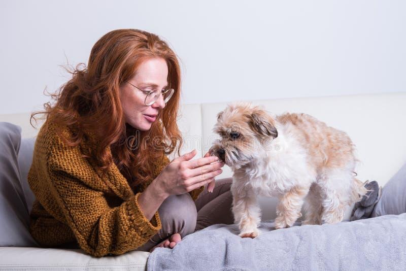 La belle femme rousse instruit son chien sur le divan photo libre de droits