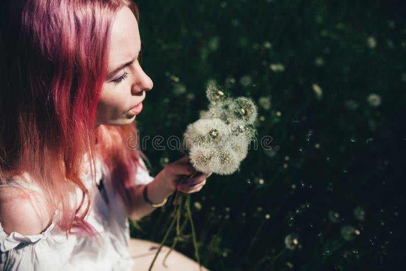 La belle fille avec les cheveux roses s'assied dans un domaine élevé avec des pissenlits pendant l'été photographie stock