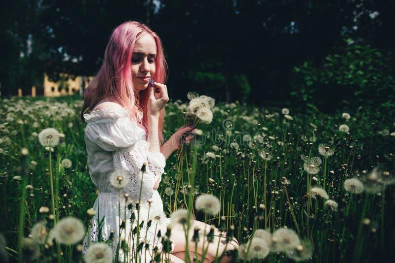 La belle fille avec les cheveux roses s'assied dans un domaine élevé avec des pissenlits pendant l'été images libres de droits