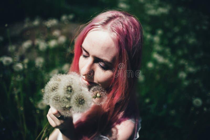 La belle fille avec les cheveux roses s'assied dans un domaine ?lev? avec des pissenlits pendant l'?t? image libre de droits