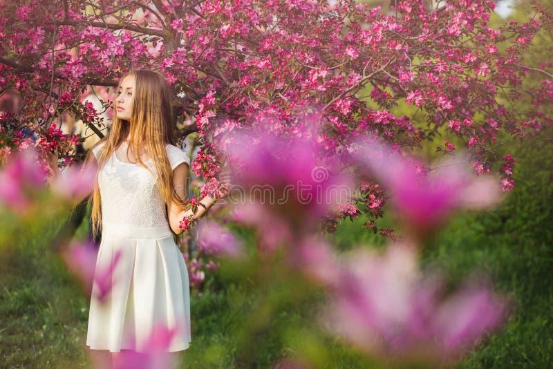 La belle fille blonde en pêche rose et Sakura font du jardinage La belle fille dehors jaillissent le portrait, jeune femme avec d photos stock