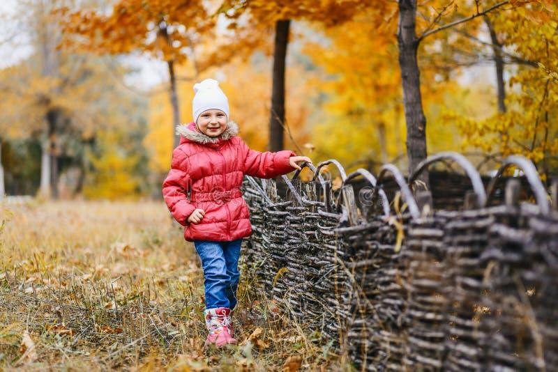 La belle fille dans une veste chaude et des jeans se tient en parc d'automne images stock
