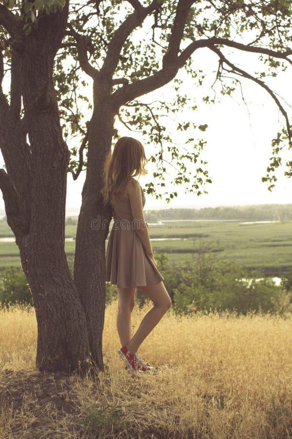 La belle fille r?veuse marchant dans un domaine dans une robe au coucher du soleil, une jeune femme appr?ciant la nature d'?t? s' photographie stock libre de droits