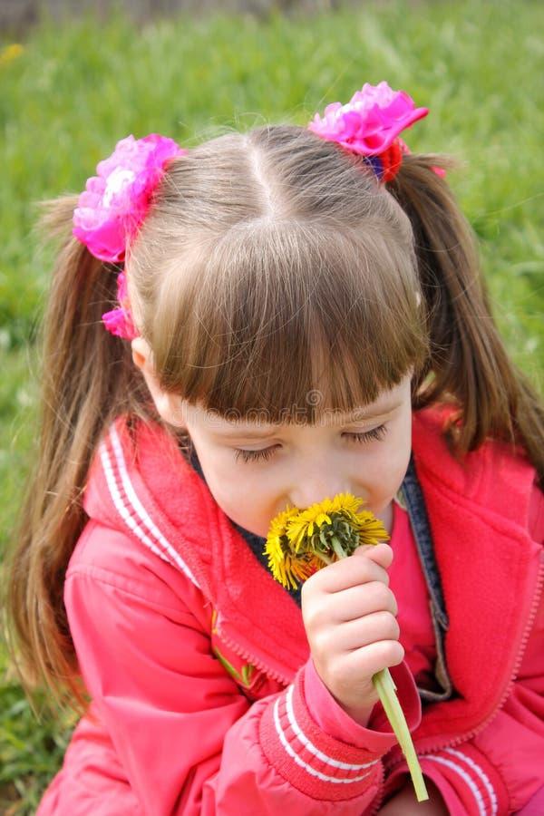 La belle fille sent les fleurs images libres de droits