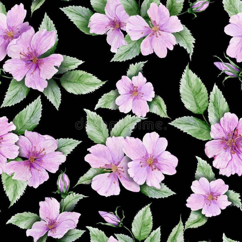 La belle hanche rose fleurit avec des feuilles sur le fond noir Configuration florale sans joint Peinture d'aquarelle illustration libre de droits
