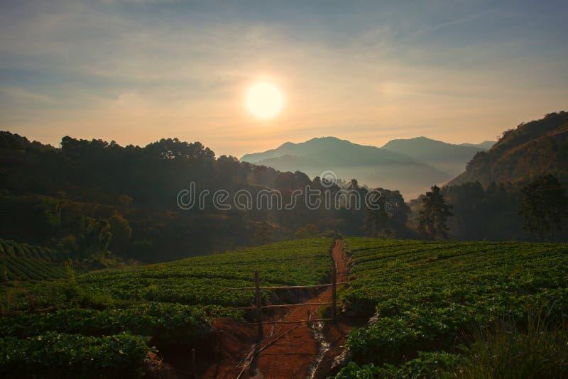 La belle hausse du soleil du khang Chiang Mai d'ANG de doi northren du thail photos libres de droits