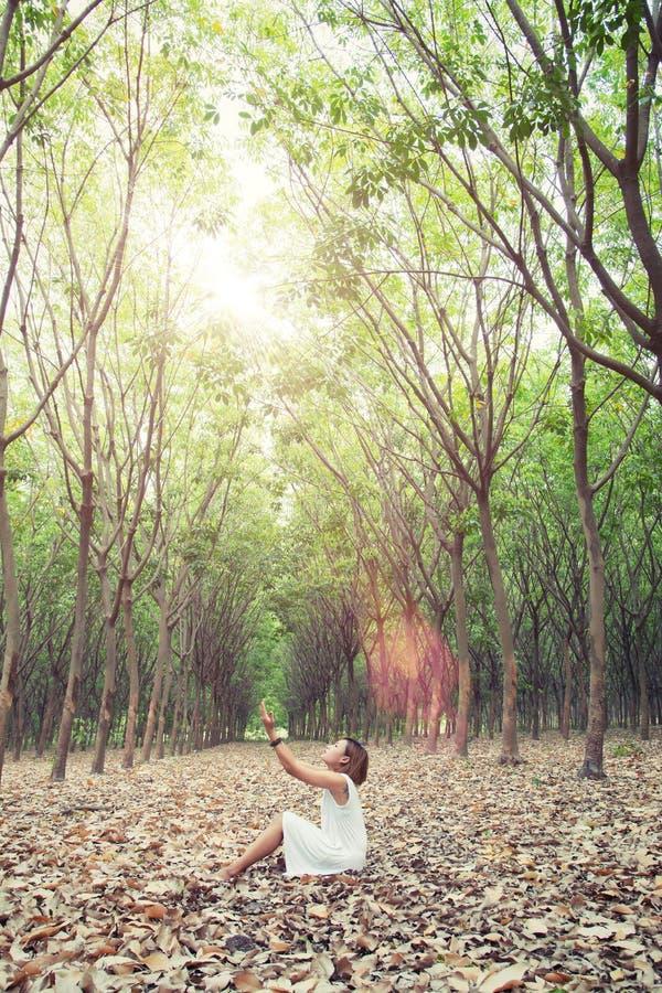La belle jeune femme prient pour quelque chose dans la forêt verte image stock