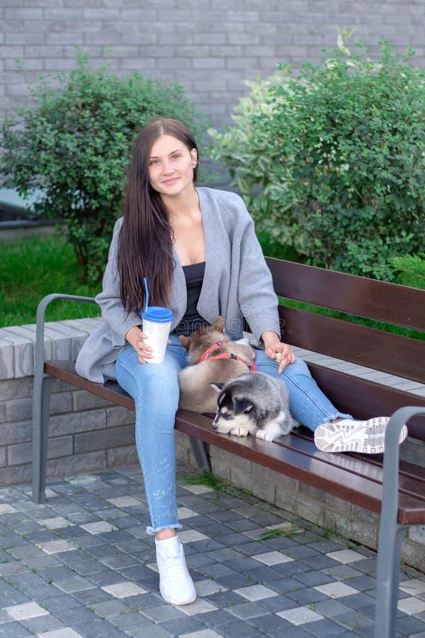 La belle jeune femme s'asseyant sur le banc en bois et apprécient avec son chien de traîneau mignon de petit chien photographie stock libre de droits