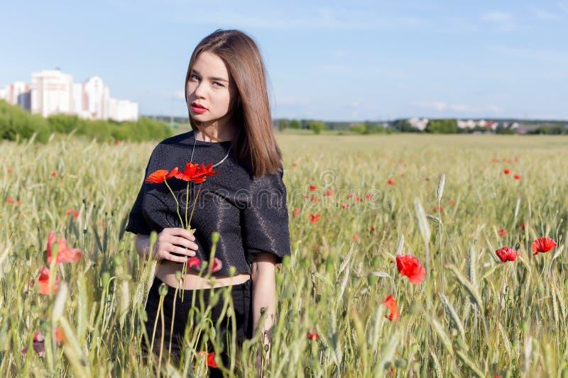 La belle jeune femme sexy mignonne avec de pleines lèvres avec les cheveux courts dans un domaine avec le pavot fleurit dans leur photo stock