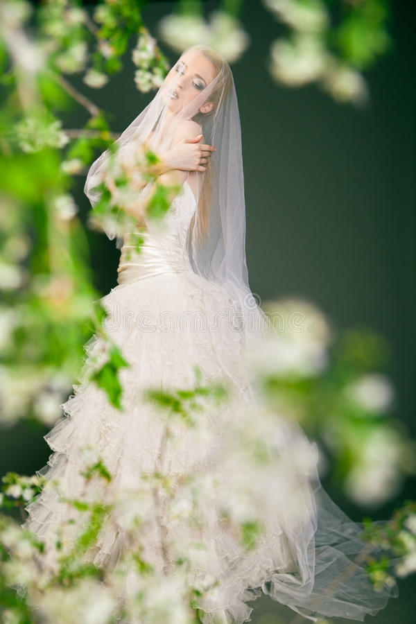 La belle jeune jeune mariée a le voile au-dessus de sa tête et photos stock