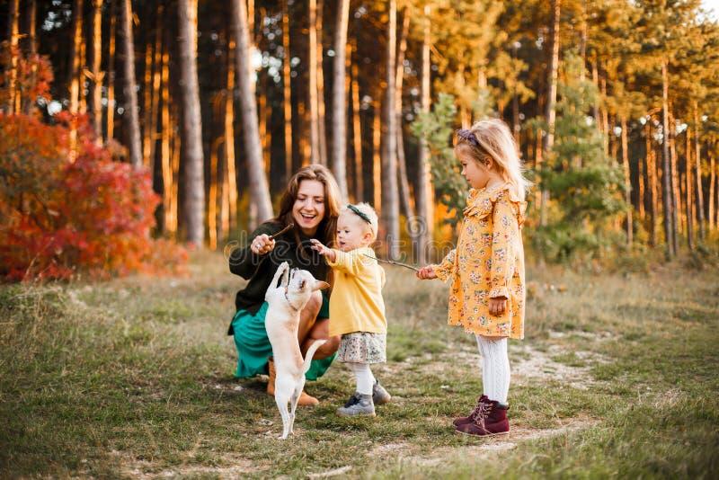 La belle jeune mère et sa petite la fille marchant en été se garent Femme et fille mignonne d'enfant passant le temps ensemble photo stock