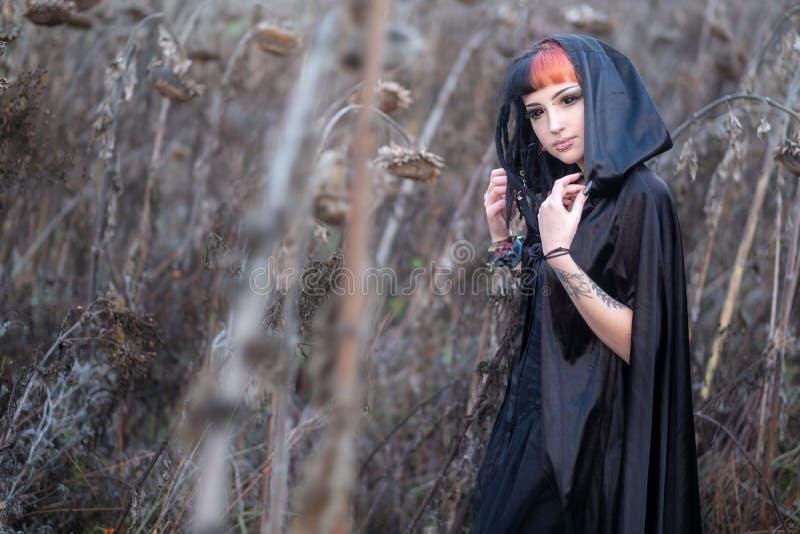 La belle jeune personne, femme excentrique, avec la coiffure intéressante dans le domaine mûr de tournesol a séché images stock