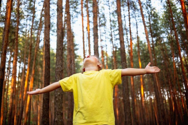La belle petite fille dans la forêt de pin avec des mains apprécie la nature photographie stock