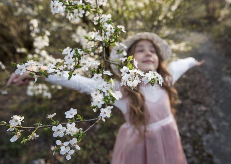 La belle petite fille defocused apprécient en nature, les fleurs de ressort dans le premier plan photos libres de droits