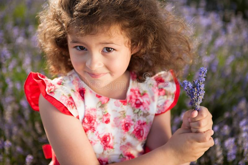 La belle petite fille heureuse avec le bouquet de l'été fleurit dans le domaine de lavande images libres de droits