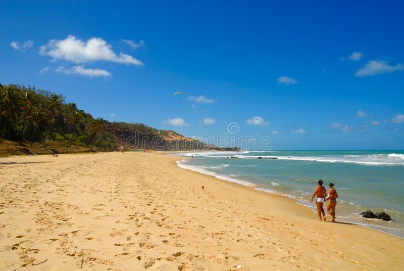 La belle plage au Praia font Amor près du Pipa Brésil image stock