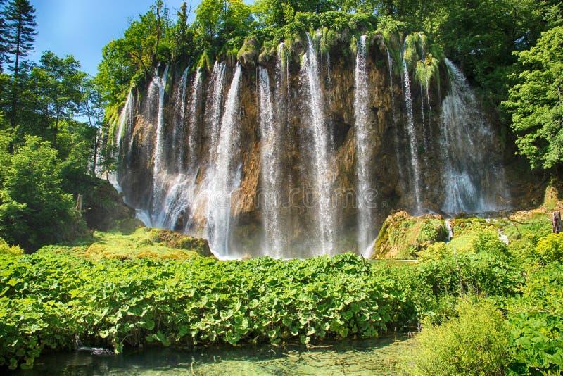 La belle vue des cascades dans des lacs Plitvice L'eau est claire et turquoise image libre de droits