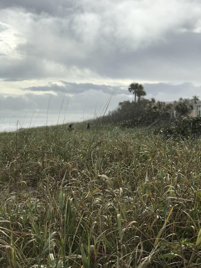 La belleza intacta de la costa nacional U de Canaveral S National Park Service foto de archivo libre de regalías
