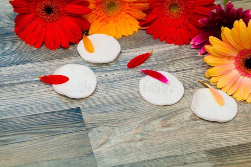 La belleza y el concepto de la moda con el balneario fijaron en el fondo de madera rústico blanco Concepto sano y de la salud foto de archivo