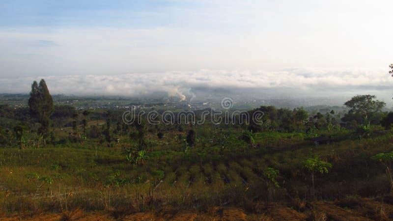 La bellezza della natura a Temanggung Central Java Indonesia fotografia stock libera da diritti