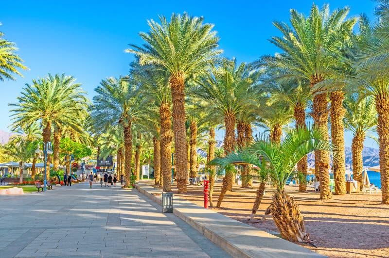 La bellezza di Eilat fotografie stock