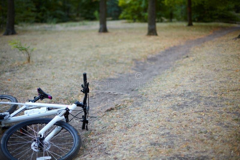 La bicicletta bianca e rosa mette sul percorso abbandonato in un parco o in una foresta in un giorno adorabile di autunno Nessuno fotografie stock
