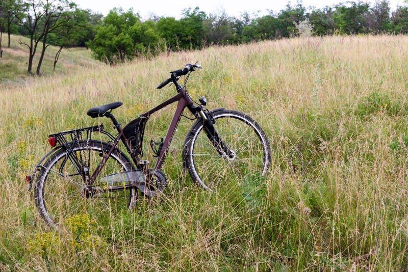 La bicyclette se tient en fleurs d'un pré sur un fond des arbres verts et d'une forêt photo stock