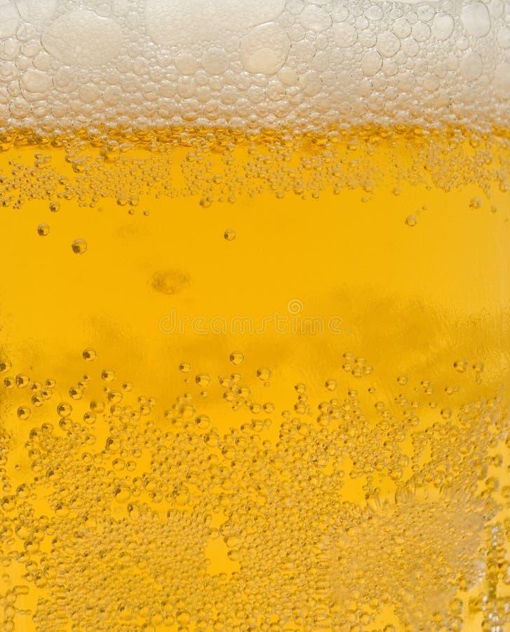 La birra chiara è in vetro fotografia stock