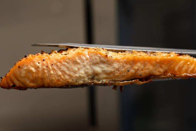La bistecca di color salmone cucinata al forno in forno ha tenuto in tenaglie della cucina, struttura estrema del primo piano del immagine stock libera da diritti