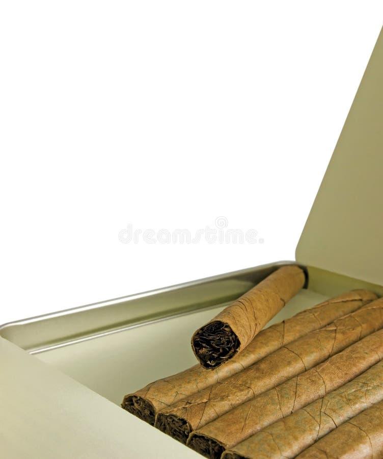 La boîte à cigares avec des cigares, grande verticale détaillée a isolé le macro plan rapproché, l'espace vide de copie de blanc image libre de droits