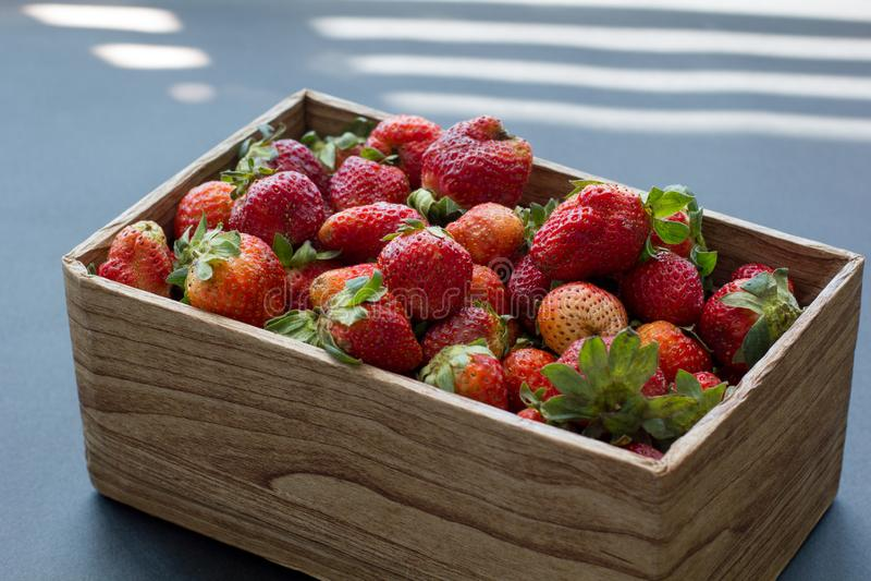 La boîte de métier de fraises organiques fraîches allument au soleil la vue de côté photographie stock