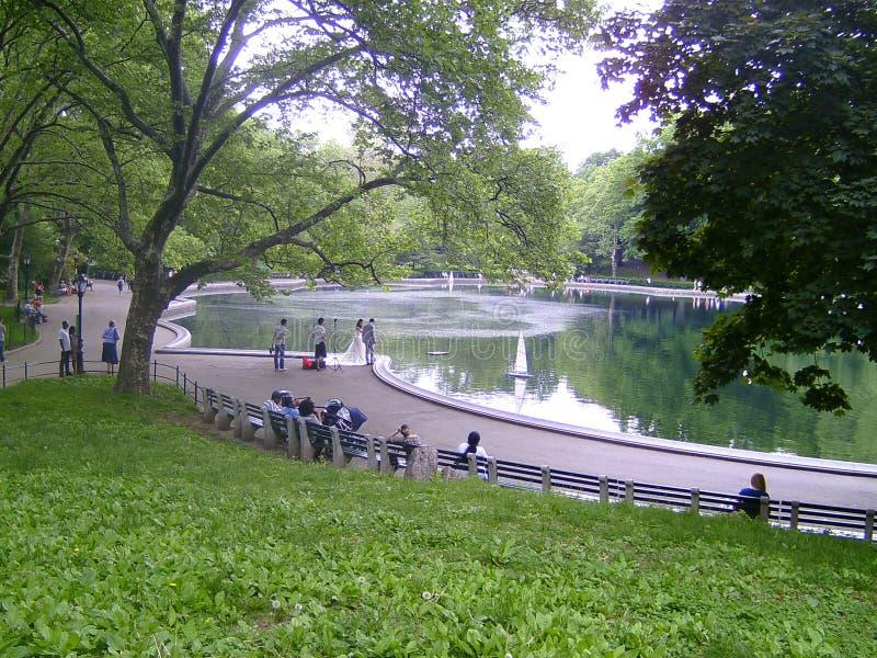 La boda representa Central Park imagen de archivo libre de regalías