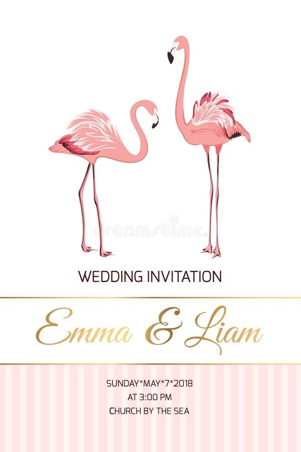 La boda rosada exótica de los pares de los pájaros del flamenco invita libre illustration