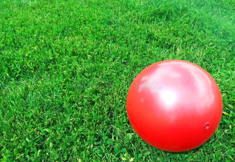 La bola roja miente en la hierba verde imagenes de archivo