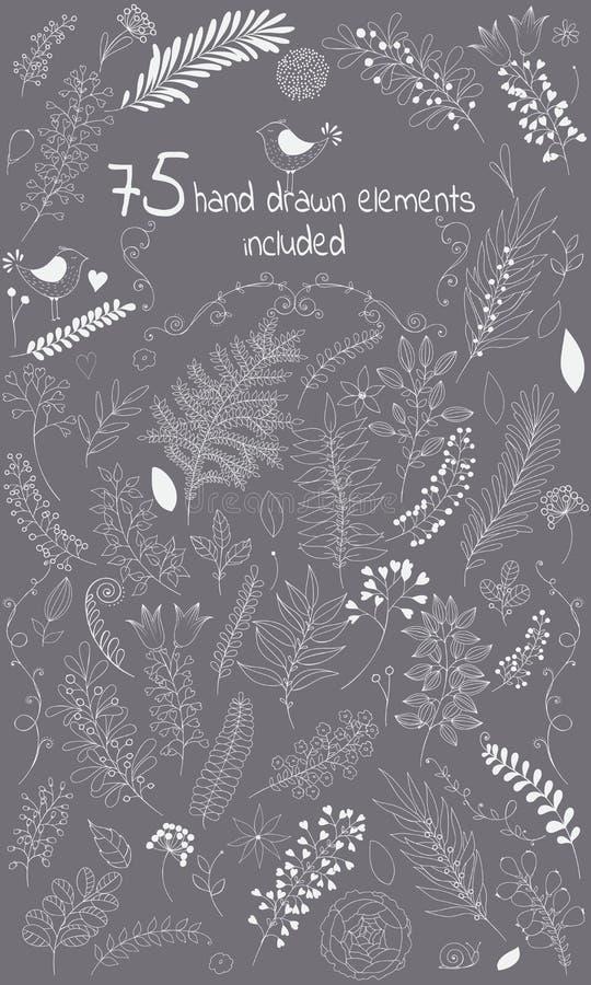 La borsa degli arnesi di progettazione di vettore comprende 75 elementi disegnati a mano floreali degli individui illustrazione vettoriale