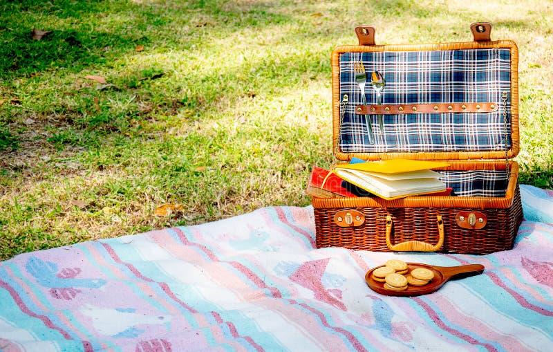 La borsa di picnic con il modello blu contiene alcuni libri è su tappeto blu e rosa inoltre vicino al piatto dei biscotti Il conc fotografia stock libera da diritti